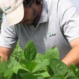 Asesoramiento y dirección técnica de establecimientos agropecuarios