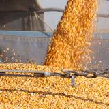 Administración empresas agropecuarias