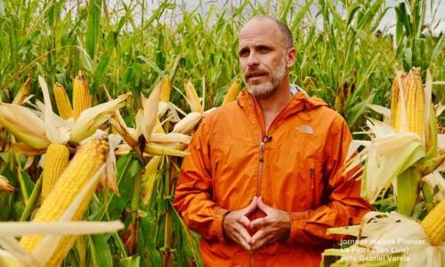 Field Day Pioneer: ensayos de tecnologías aplicadas